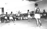 <h5>Seleção de Volleyball do Liceu</h5><p>Pedro com o número 5 na camisola.</p>