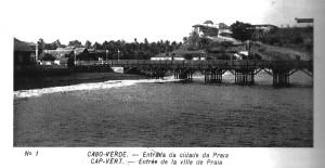 7-Da praia de Gamboa pode-se reconhecer a punjança vegetal do Taiti no passado 4